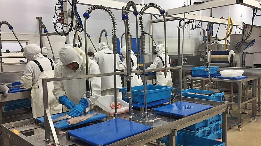 Las universidades captan 10 millones de euros para innovar en el sector pesquero