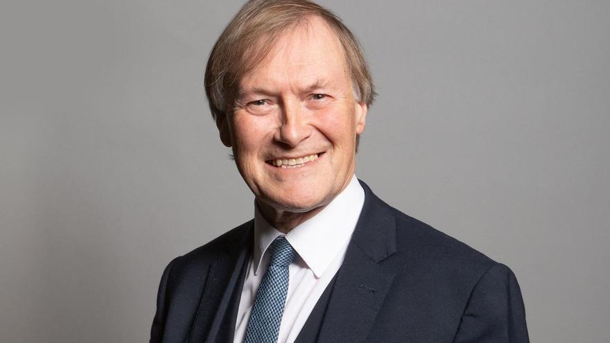 Mor apunyalat un diputat conservador britànic durant una trobada amb votants