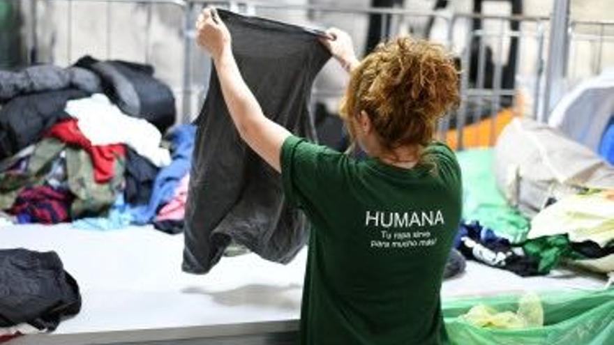 Humana recupera 29.000 peces de roba a Castelló en el primer semestre amb un benefici ambiental i social