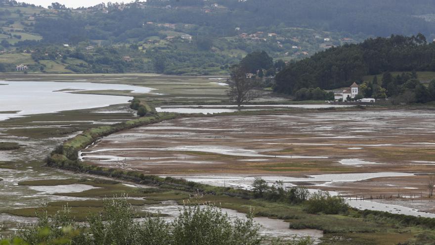 El Principado pone en marcha un plan para recuperar la reserva natural de la ría de Villaviciosa