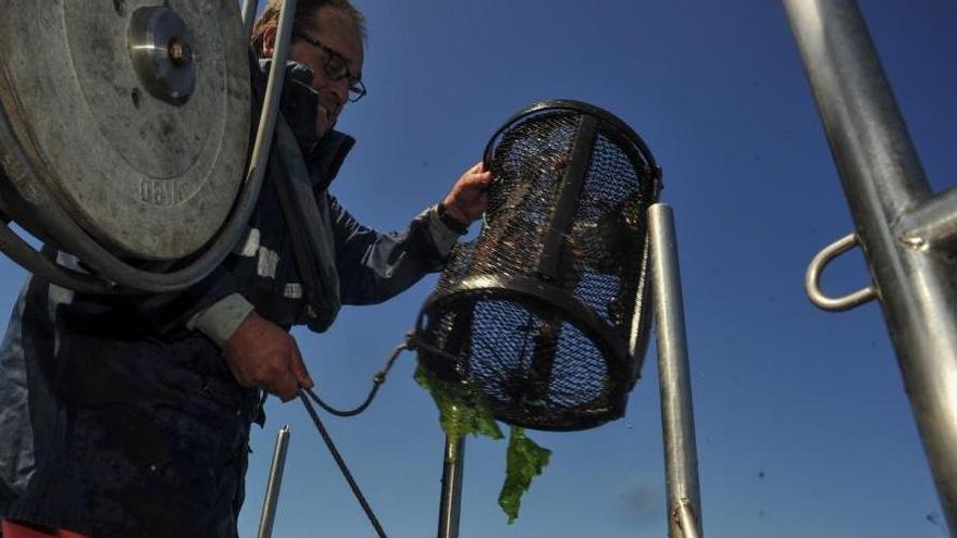 La lucha contra el furtivismo interviene 750 útiles de pesca y un vehículo