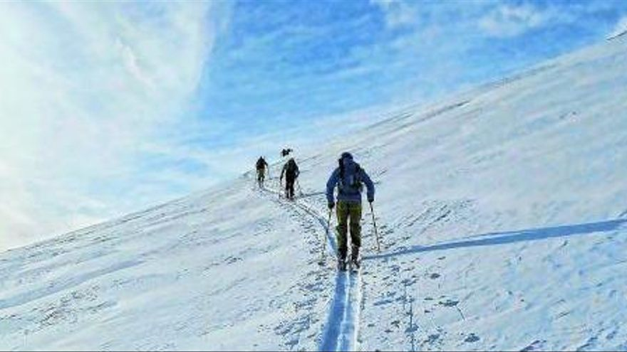 Quines són les modalitats d'esquí?