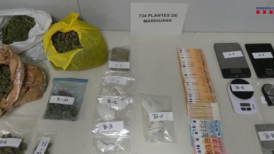 Quatre detinguts per cultivar marihuana a Figueres, i a més tenien cocaïna i heroïna
