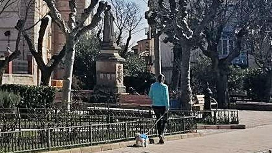 Coronavirus en Zamora   El Ayuntamiento de Toro aplica nuevas normas para regular las salidas con mascotas