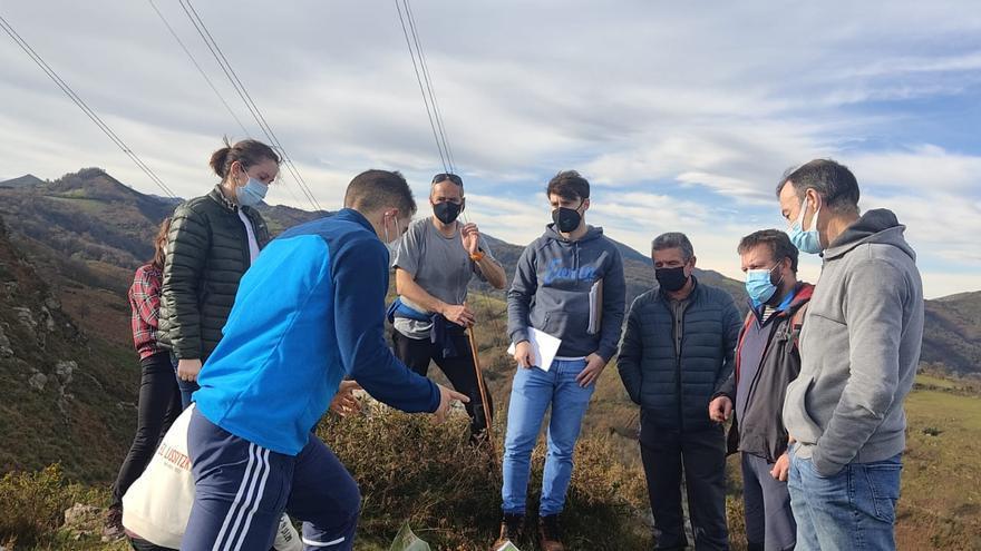 El Ayuntamiento de Grado rechaza el recurso de reposición de Proaza por el deslinde