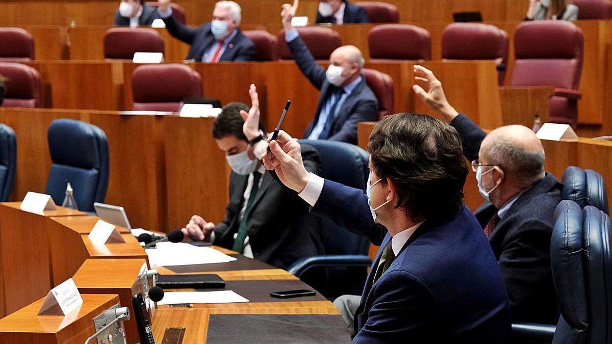 Fernández Mañueco, en primer término, junto al vicepresidente Igea, durante las votaciones de ayer en las Cortes      ICAL