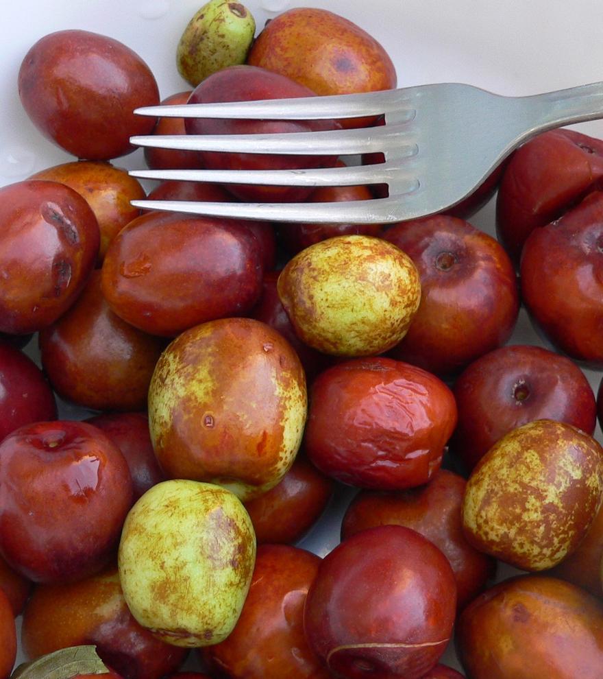 Wenn Mallorquiner richtig glücklich sind, denken sie an diese Frucht
