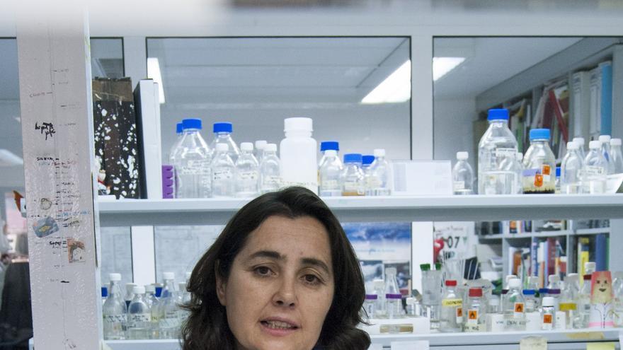 María Fernández, directora del IPLA, nueva delegada del CSIC en Asturias