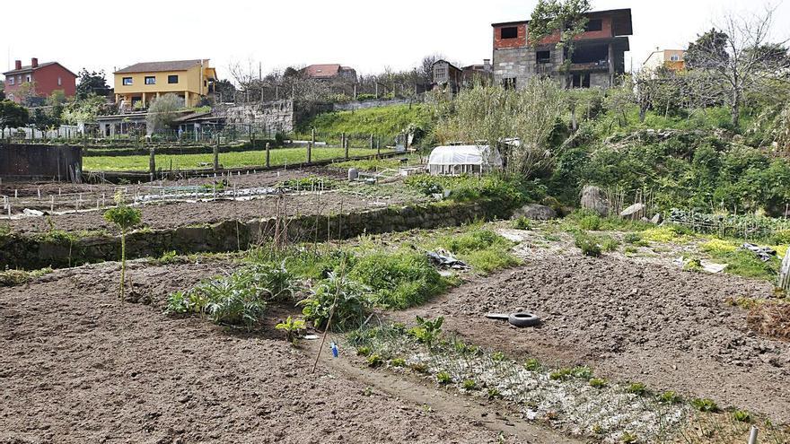 División sin límites de la tierra agraria