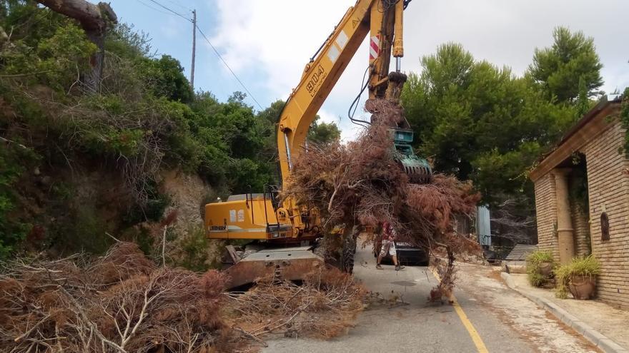 Xàbia retira las ramas secas que bloqueaban una cuneta del vial de la cala de la Barrraca