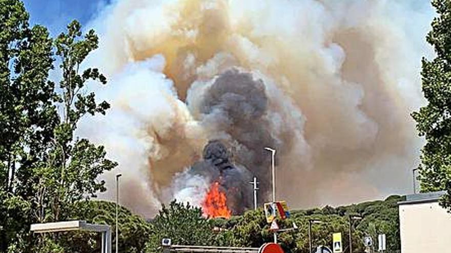 Un incendi crema més d'11 hectàrees a prop d'una zona urbanitzada a Argentona