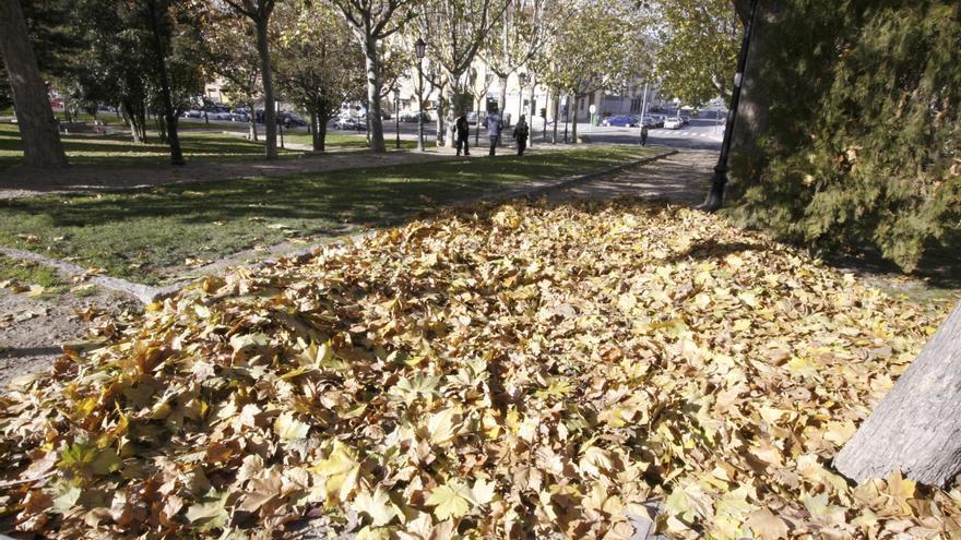 Zamora en otoño.