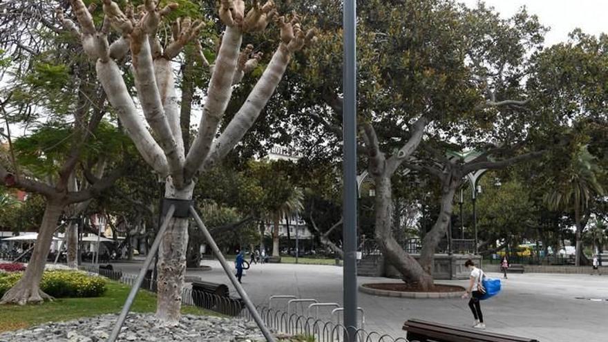 El agresor del apuñalamiento en San Telmo acaba detenido