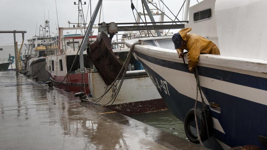 """Dénia rechaza que se prohíba la pesca de """"tresmall"""" en el litoral de l'Almadrava"""