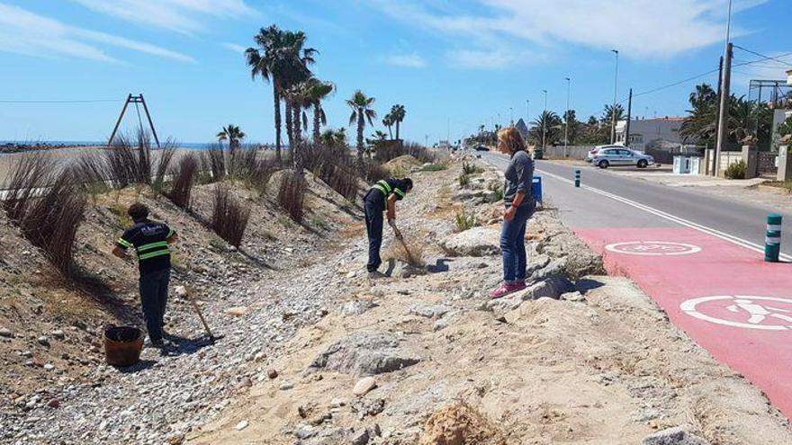 Playas inicia el acondicionamiento del litoral en Almassora