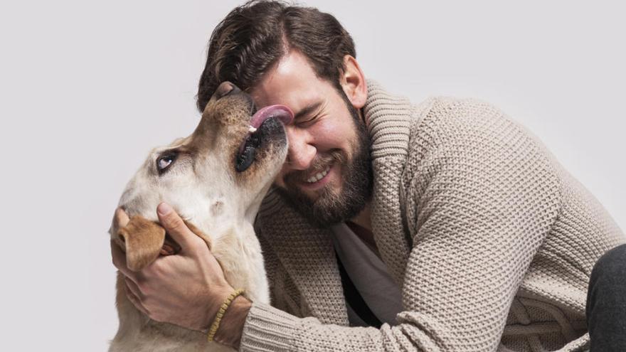 Los peligros de los besos de los perros