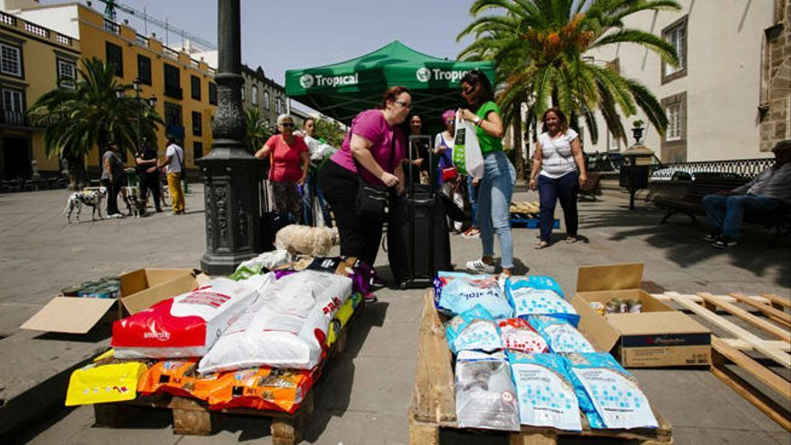 La campaña solidaria ´Echemos una pata´ de Tropical recoge 8.500 kilogramos de alimentos