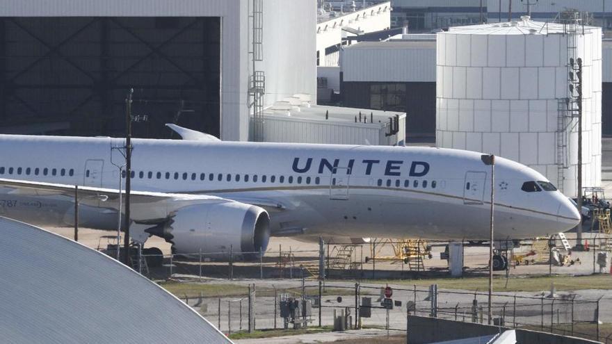 Un perro muere en un vuelo de United Airlines tras viajar con el equipaje de mano