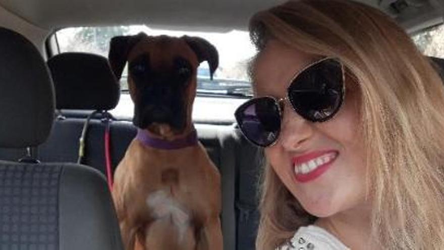 Denuncia la muerte de su perra a causa de la pirotecnia en Nochevieja