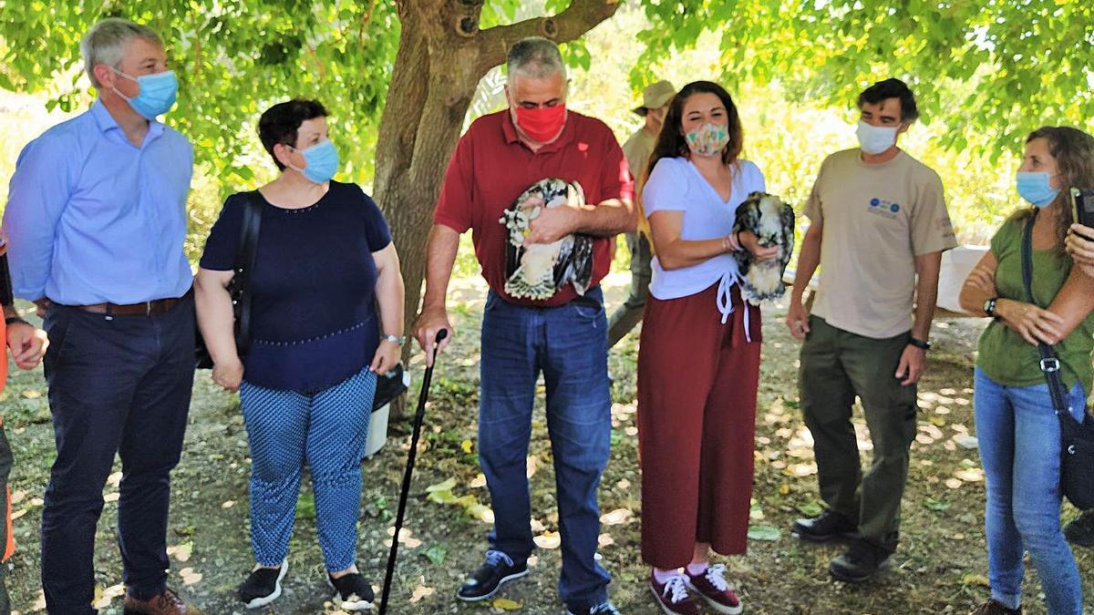 Muere en Granada una de las tres águilas del plan de reintroducción del marjal