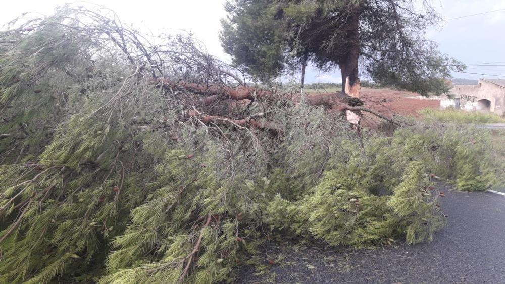 """Gewitter mit Hagel und """"cap de fibló"""" auf Mallorca"""