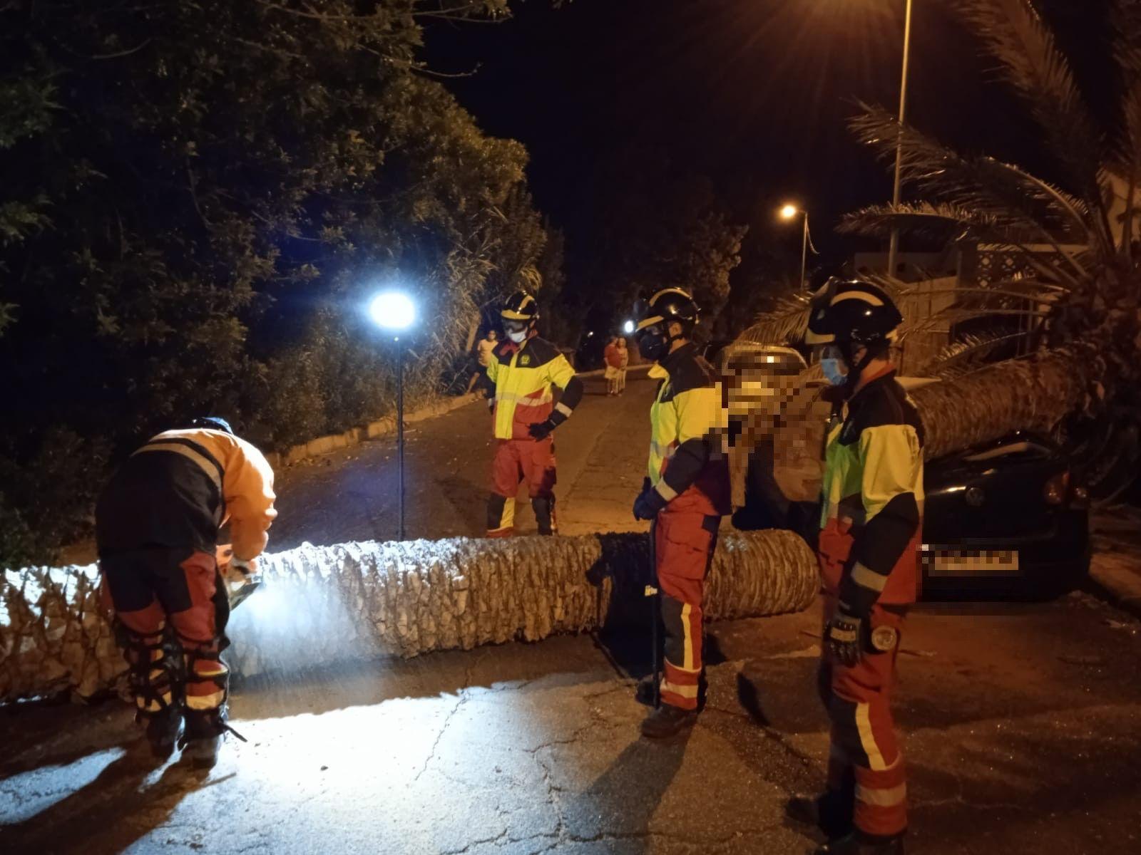 Una palmera se desploma sobre un coche en Marzagán