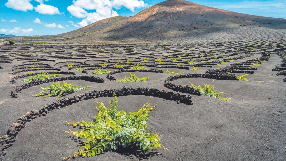 La Geria, en Lanzarote, un paisaje cultural construido con naturaleza y sentido común.