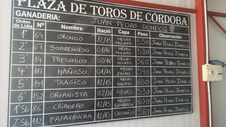 'Orondo', de Juan Pedro Domecq, abre el mano a mano entre Finito y Morante