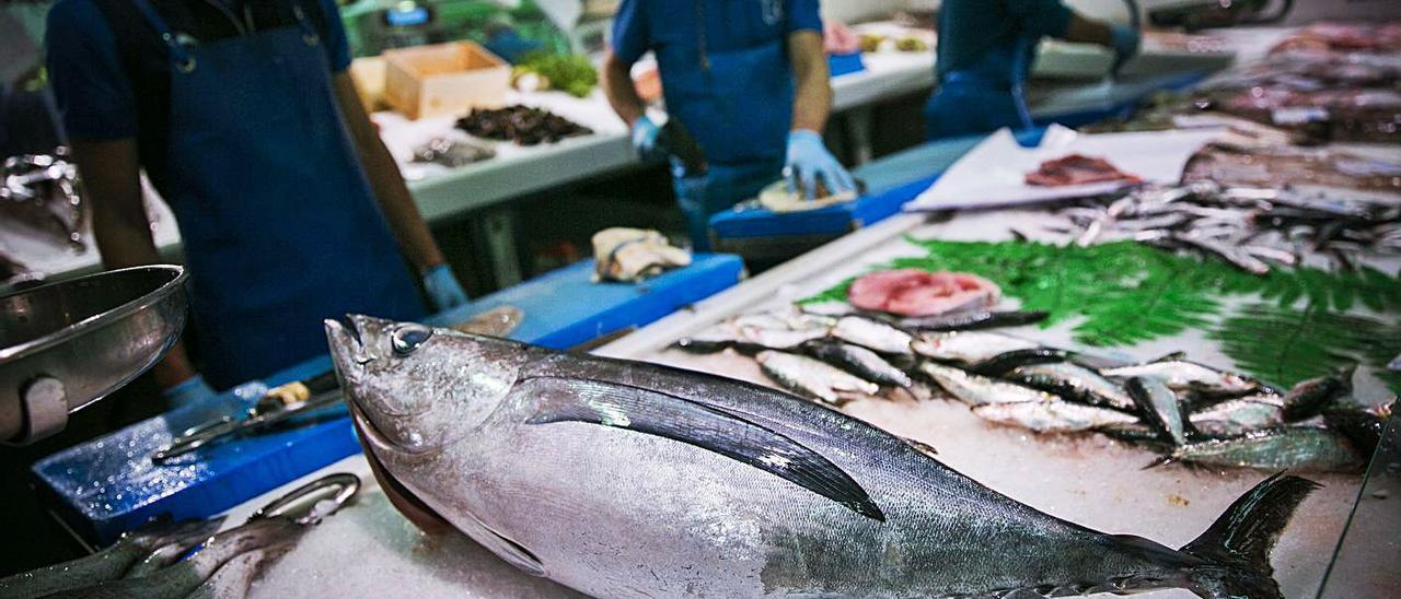 Un ejemplar de bonito del Norte en una pescadería.   Irma Collín