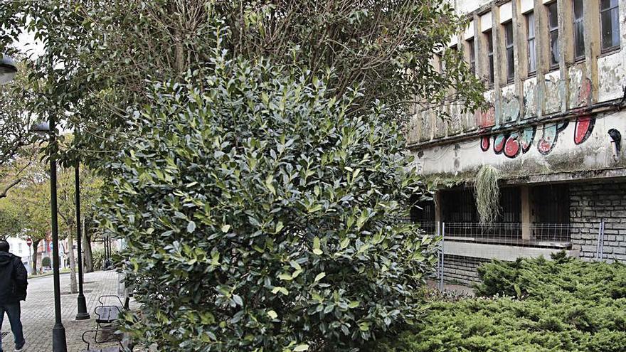Preocupación en Ceares por tres personas que ocupan el hogar social abandonado