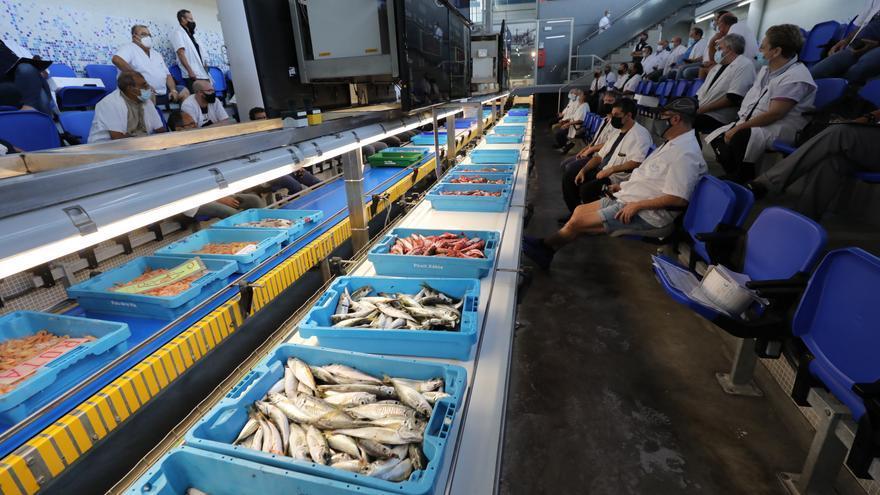 El Consell cifra las ayudas a la Cofradía de Pescadores de Santa Pola en 1,7 millones
