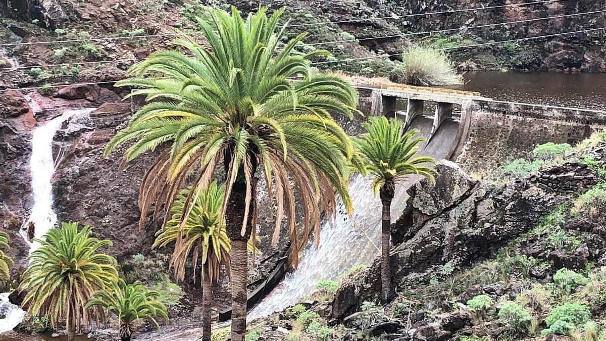 Imagen de un torrente de agua corriendo por un barranco de la Isla Colombina.
