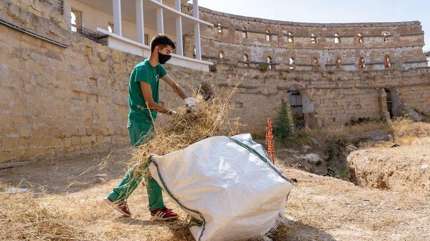 El Anfiteatro Romano está más cerca de recuperar su fachada marítima
