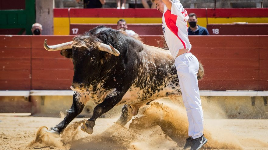El regreso del Concurso Nacional de Recortadores de Castelló corona a Onda