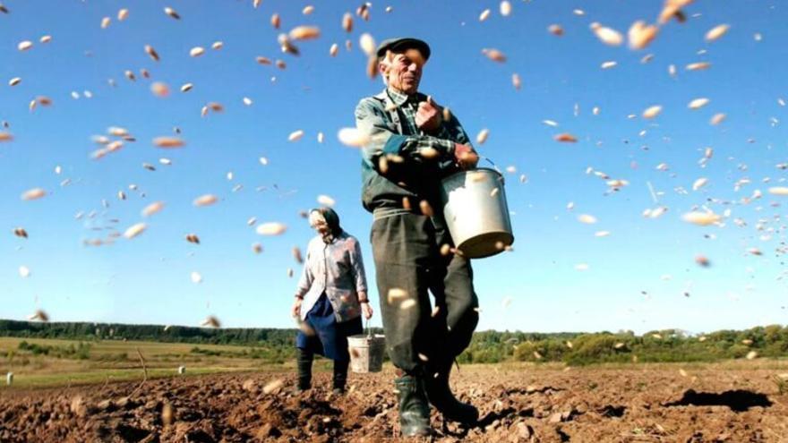 Cómo diseñar una agricultura frente el cambio climático