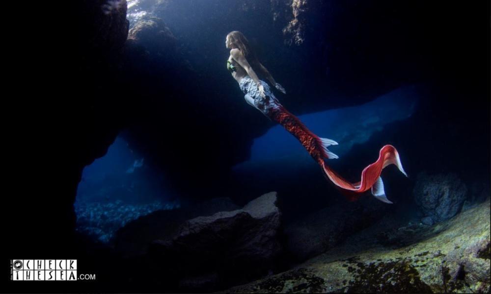 Una sirena en aguas de Tenerife