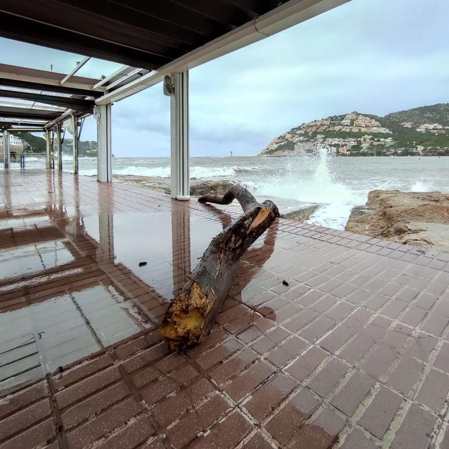 Bella provoca grandes destrozos en el Port d'Andratx