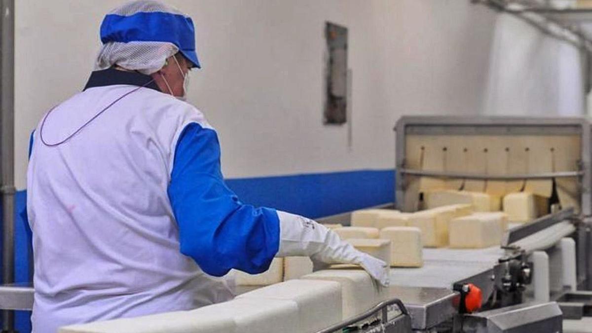 Una mujer en su puesto de trabajo en una industria agroalimentaria.