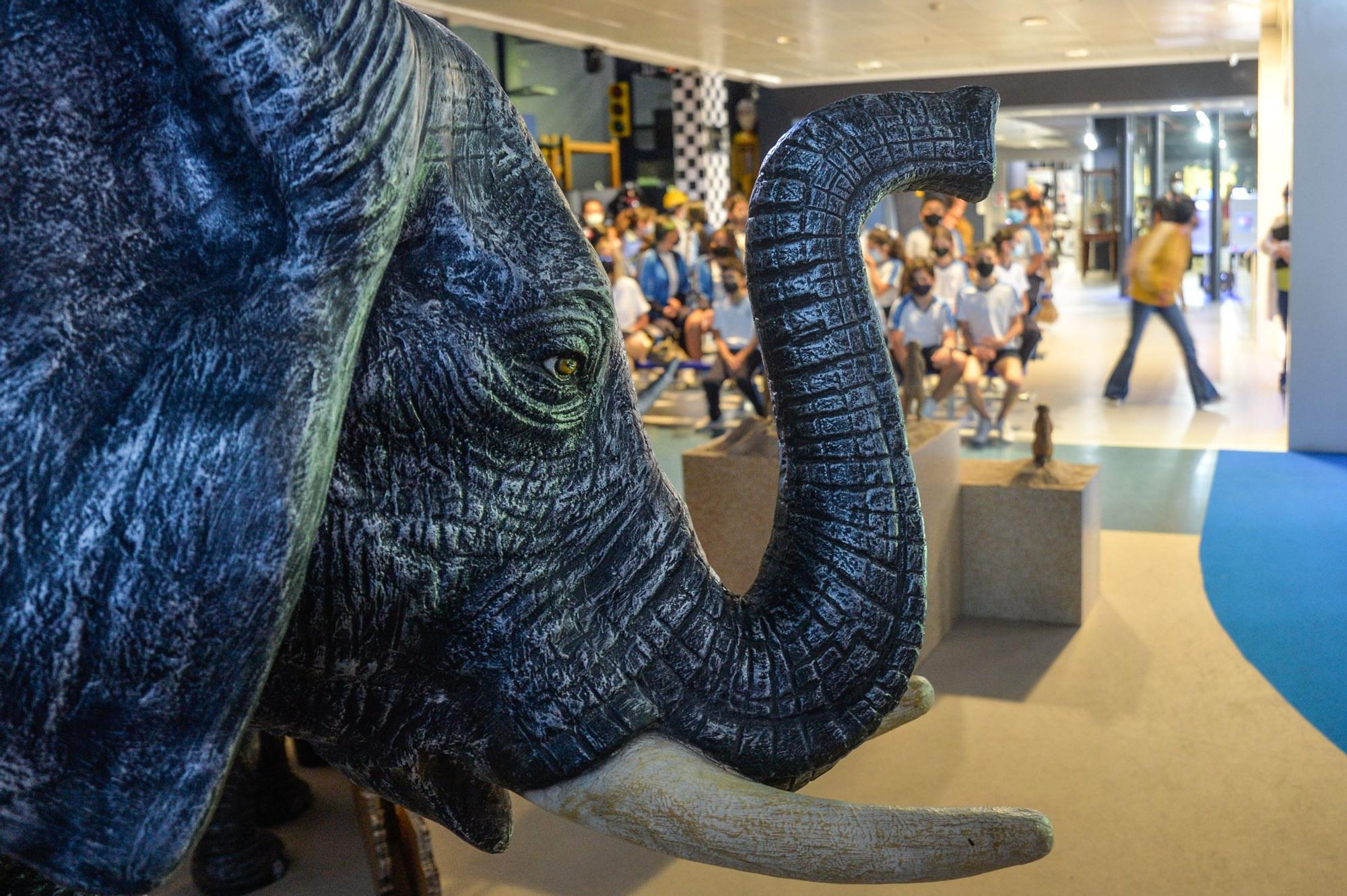 Exposición 'Tiempo para el cambio' en el Museo Elder de la Ciencia y