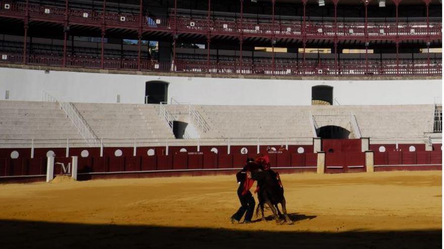 No habrá toros en La Malagueta este 2020