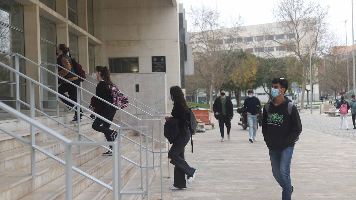 Estudiants al campus de Vera de la UPV.