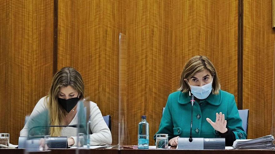 La Junta de Andalucía reconoce que no tiene solución para Texlencor