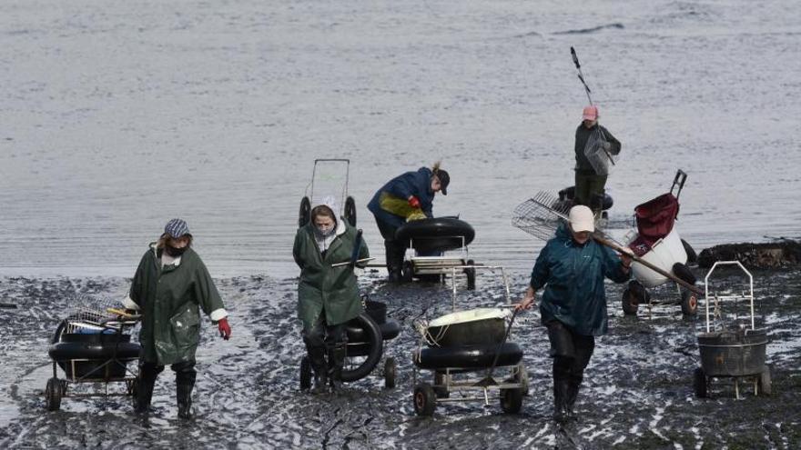 Alivio por la escasa mortandad del marisco tras los temporales