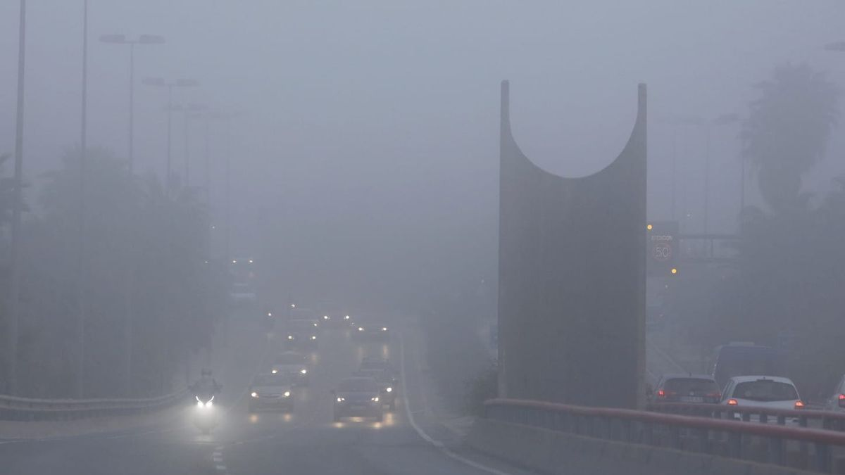 """The fog has """"swallowed"""" this morning the Red Bridge of Alicante."""
