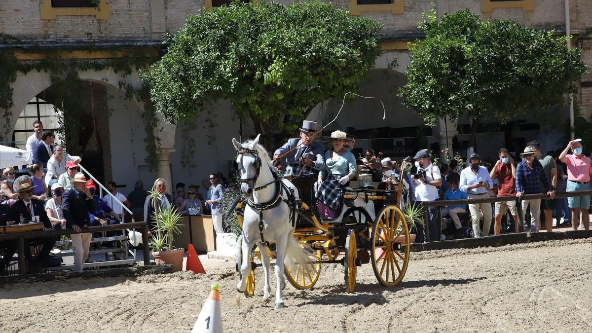 Concurso de atalajes celebrado en Caballerizas.