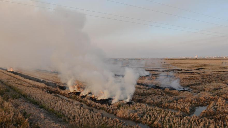 Ontinyent lanza una app para  reducir las quemas agrícolas