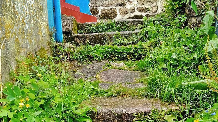 Javier Carro exige la limpieza de las escaleras anexas al Concello Vello