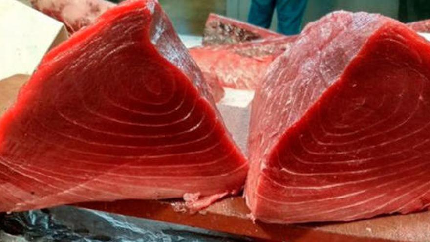 Sanitat recomana que embarassades i nens menors de 10 anys no mengin tonyina vermella