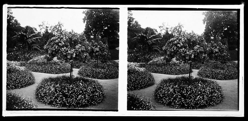 jardines 5.jpg