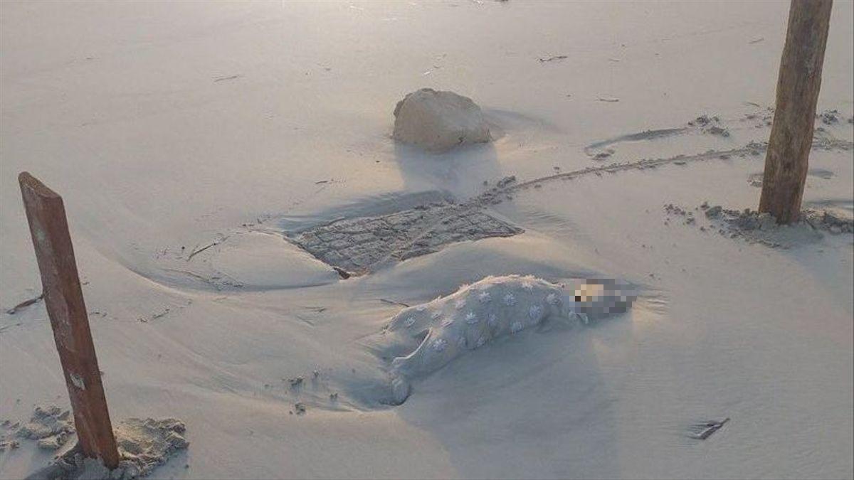 Un nadó mort en una platja de Líbia
